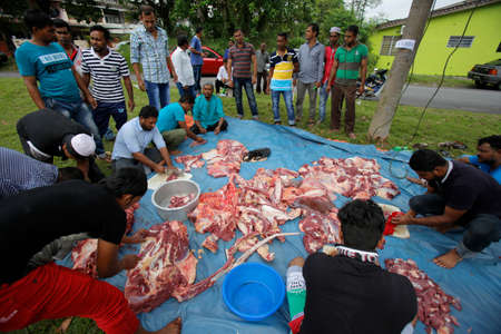 Muslims slaughter and separates a cow during Eid Al-Adha Al Mubarak, the Feast of Sacrifice cerebration which held at  Masjid Muhammadiah, the Chinese Mosque in Ipoh, Perak, Malaysia. Editorial