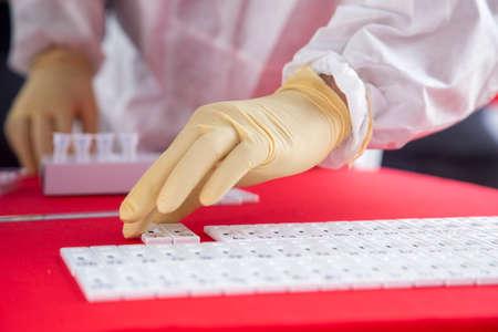 Medical officer arranges RTK-Ag swab test kits during a mass test for Covid-19 virus. Stock fotó
