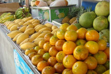 tropical fruit photo