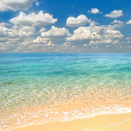quiet scenery: Tropical beach.