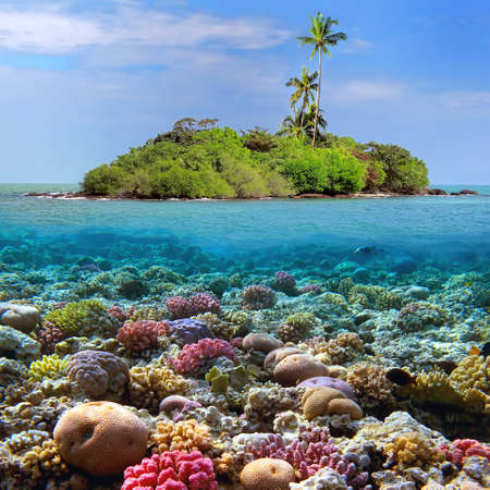 Coral island and reef sharks, Siam Bay, Thailand  Stock Photo