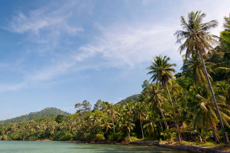 grenadines: Beautiful tall palm trees and white sandy beach on exotic island against azure water and blue sky Stock Photo