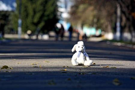 Un jouet petit lapin laissé assis dans le centre de la chaussée comme un symbole de l'enfance passé Banque d'images
