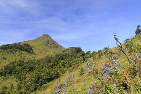 dao: View from Doi Chiang Dao mountain, Chiang mai, Thailand.