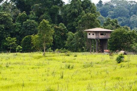Animal view tower at Kaoyai National Park, Thailand.  photo
