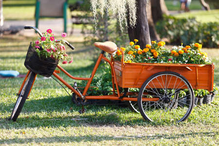 Beautiful floral bouquet on the bicycle Stock Photo
