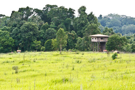 Animal view tower at Kaoyai National Park, Thailand. photo