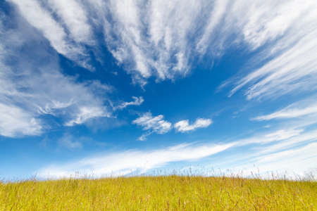 Grass field under blue cloudy sky photo