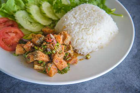 larb salmon on rice, spicy salmon thai food 免版税图像