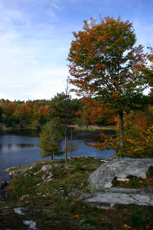 Autumn Colors by the Lake photo