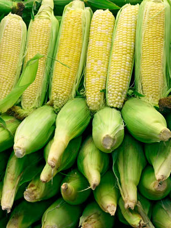 comestible: Corn Arrangement 2