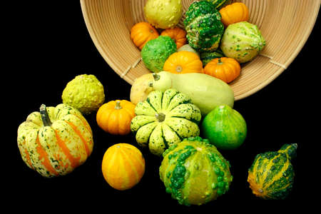 Squashes Falling Out of a Basket photo
