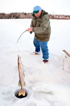 Fisherman Pulling a Big Pike From Under the Ice photo