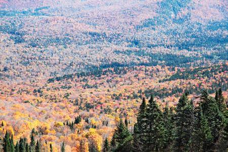 Autumn Colors in Mont-Tremblant, Quebec, Canada photo