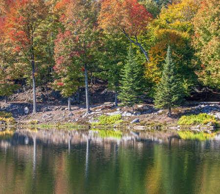 The colors of autumn Quebec, Canada