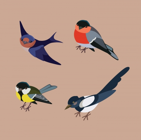 bullfinch: vector collection of winter city birds