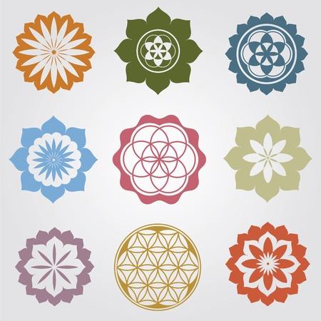 インド: 花の詳細な曼荼羅図  イラスト・ベクター素材