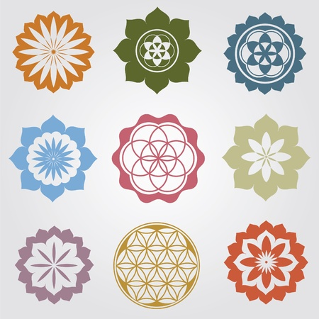 india pattern: Floral detailed mandalas illustration