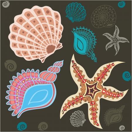 fishing net: Underwater life set  shells, stars and snakes vector illustration   Illustration