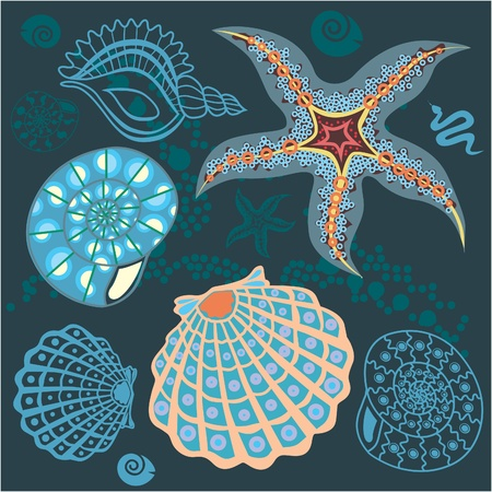 Underwater life set  shells, stars and snakes  illustration   Vector