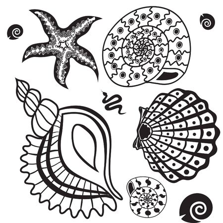 sea star: Underwater life set  shells, stars and snakes illustration