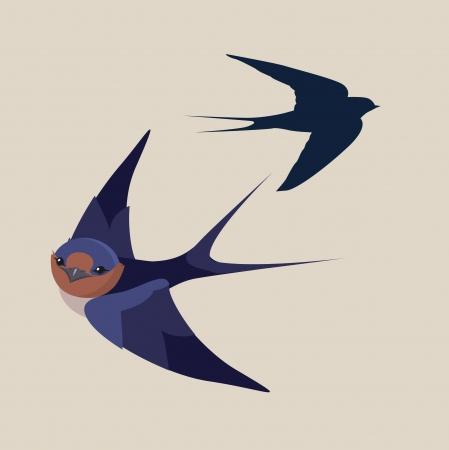 birds in flight: little swallow bird vector illustration