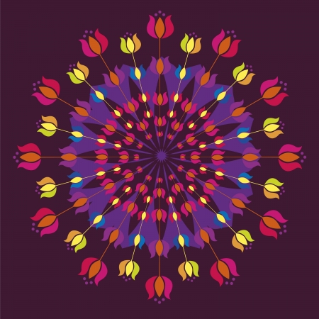 Floral detailed mandalas vector illustration Stock Vector - 18568639