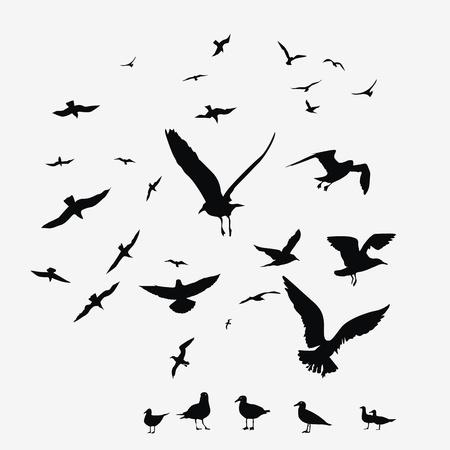 zwerm vogels: pak van meeuwen vectordruk Stock Illustratie