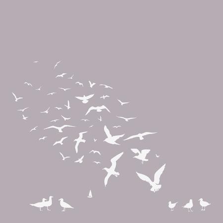 bandada pajaros: paquete de impresión gaviotas Vectores