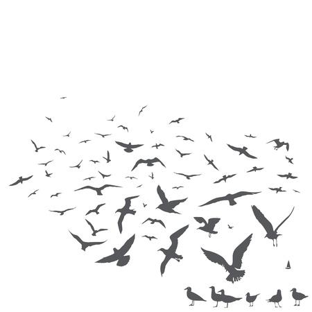 zwerm vogels: pak van meeuwen druk Stock Illustratie