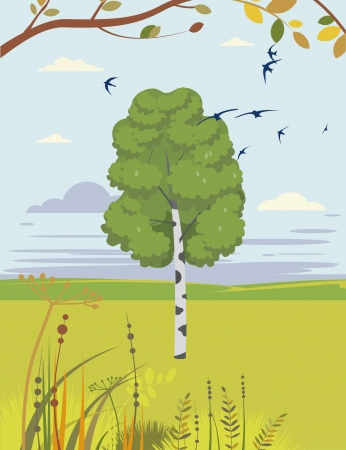 birch and swallows summer landscape Stock Vector - 18990205