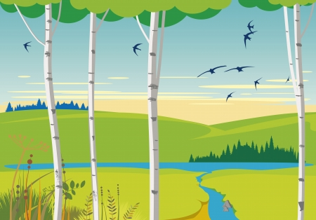 birds scenery: birch landscape and swallows