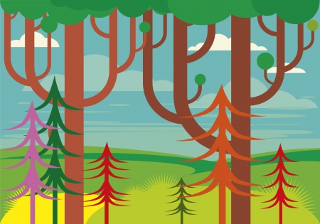 reforestaci�n: la fantas?a del paisaje