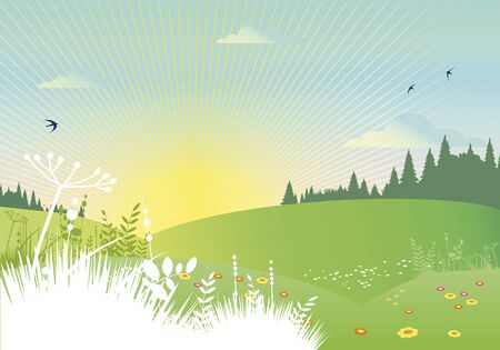 rural summer landscape Stock Vector - 18990215