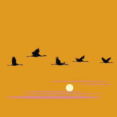 crane pack and sunset vector illustration