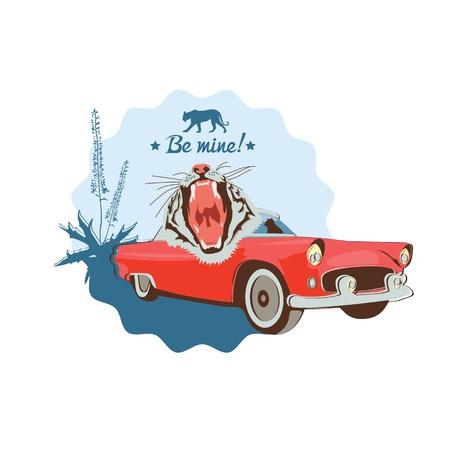 classic cars: Wild cat retro car driver