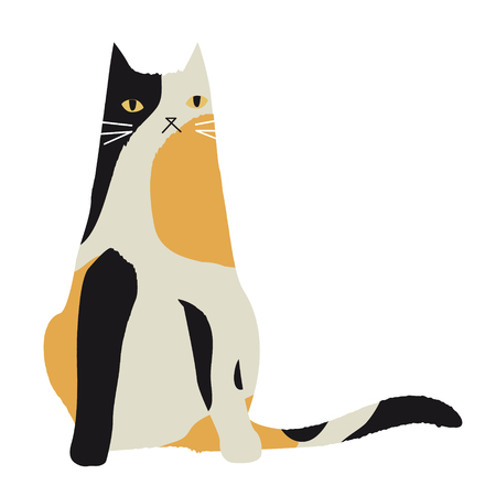 calico cat: calico cat character