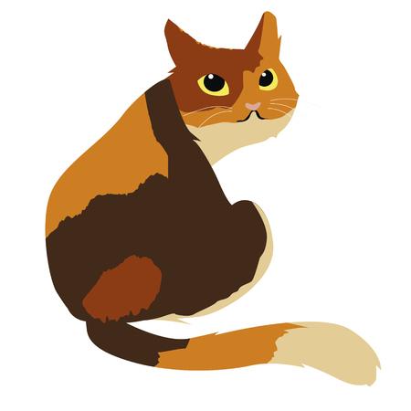 calico cat: calico cat