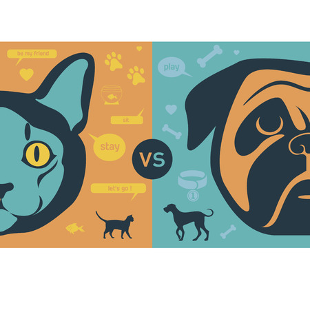 kitten cartoon: Cat vs dog infographic illustration Illustration