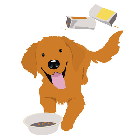 empty bowl: Little golden retriever with empty bowl Illustration