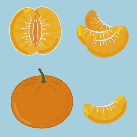 mandarin: Mandarin with parts illustration Illustration
