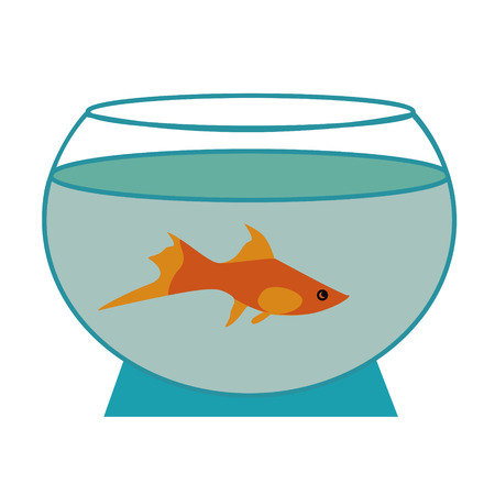 aquarian fish: Fish in an aquarium