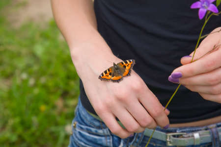 Butterfly on woman hand