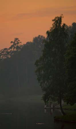 Estate tramonto nel parco cittadino. Nebbia in stagni di acqua.