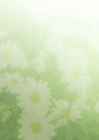 paper for the fresh green with flowers on the abstract background photo
