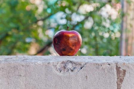 bad apple: Rotten apple on concrete wall.Soft focus.