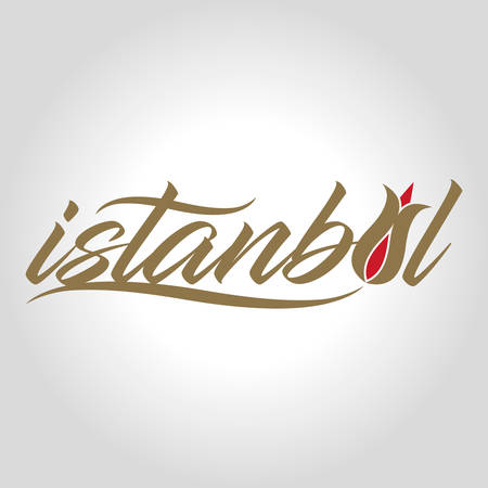 Istanbul calligraphic icon vector illustration on light background.