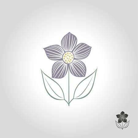 flower template vector illustration