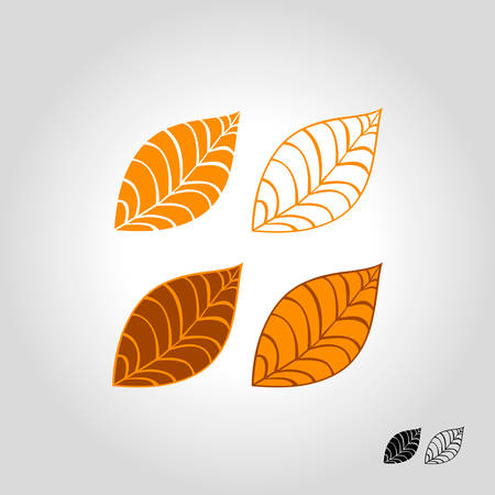 autumn leaf logo, icon and symbol vector illustration