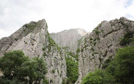 cima montagna: Una cima di una montagna rocciosa con alberi ancora.